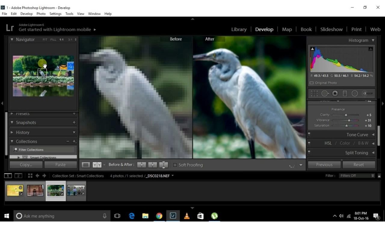 Adobe Lightroom 6 - Nederlands - Windows/Mac