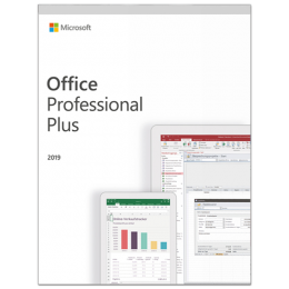 Microsoft: Microsoft Office 2019 Professional Windows