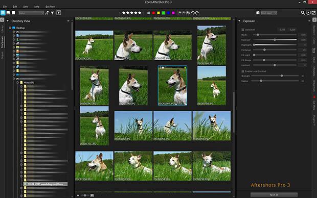 Aftershot 3 organizer - ontdek, sorteer en beheer je foto's