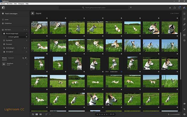 Lightroom CC organizer - ontdek, sorteer en beheer je foto's